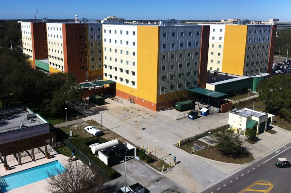 Review: University of South Florida